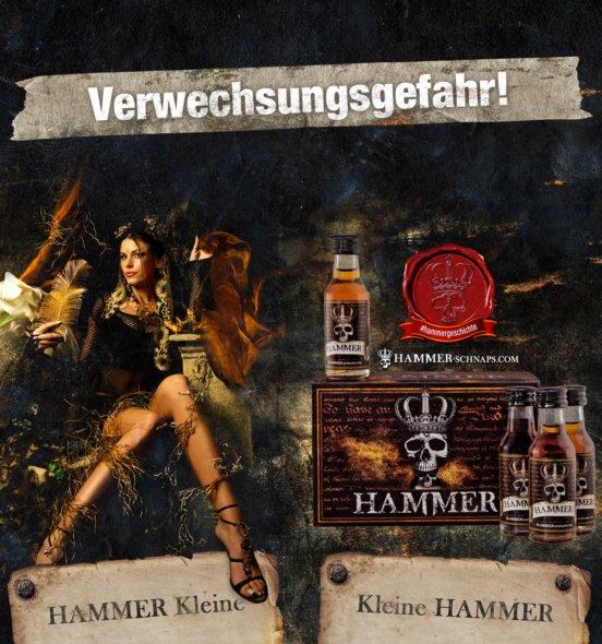 HAMMER Würfel 20x0,02l